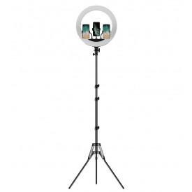 Iluminador Circular de Led Ring Light 45cm com Tripé de 2m - Apexel